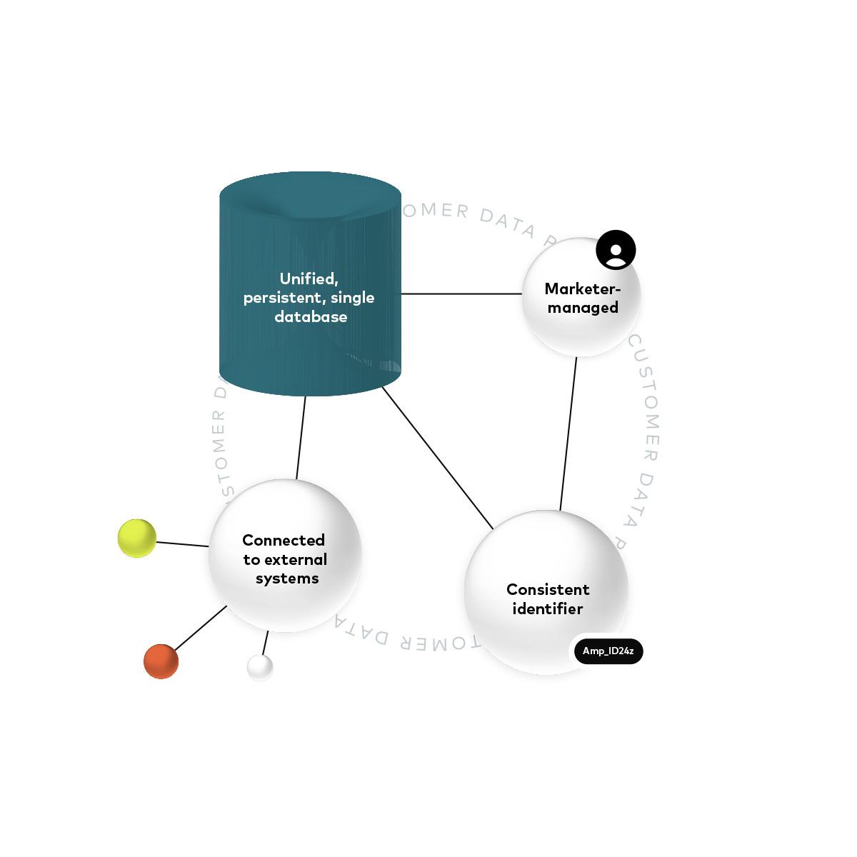 Image of CDP diagram white