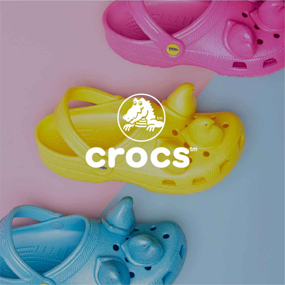 Image of Solutions Illos Crocs 20