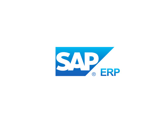 Image of SAP ERP